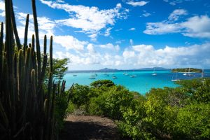 Tobago Cays Saint Vincent and the Grenadines sailing charter with Nautical Escape